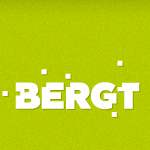 14612 Falkensee – BERGT-Consulting GmbH & Co. KG